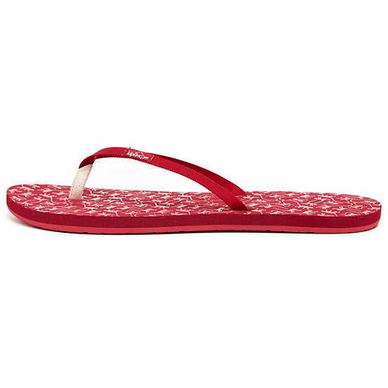 FLIP FLOP Medium,Monkey Mania Pe,large