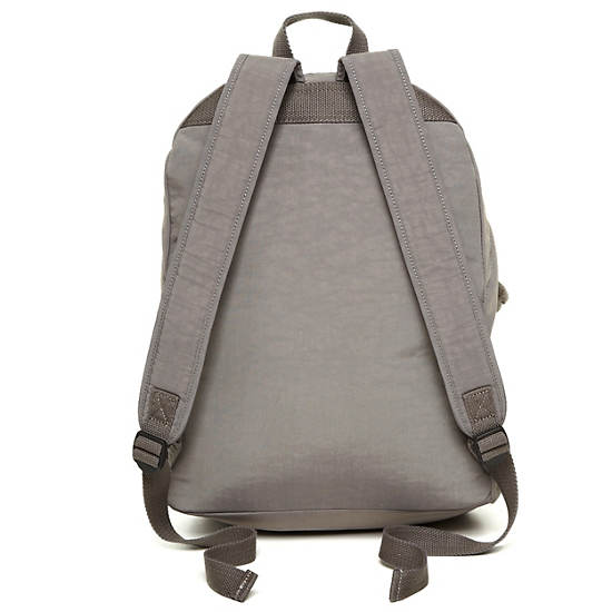 Ridge Backpack,Celo Grey,large