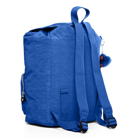 RAYCHEL Backpack,Glacier Blue,large