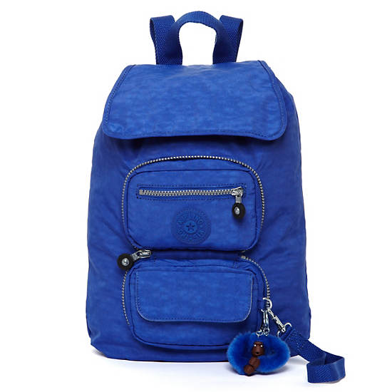 Alicia Foldable Backpack,Glacier Blue,large