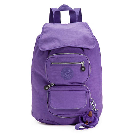 Alicia Foldable Backpack,Vivid Purple,large