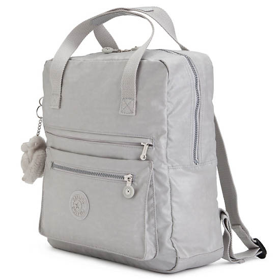 Salee Backpack,Pearlized Ash Grey,large