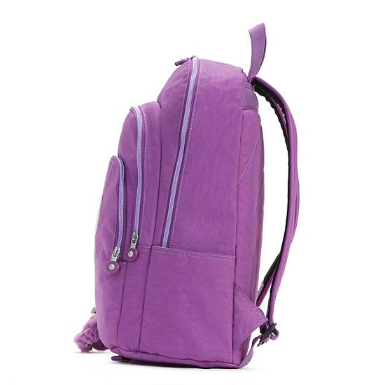 Miles Large Laptop Backpack,Violet Purple,large
