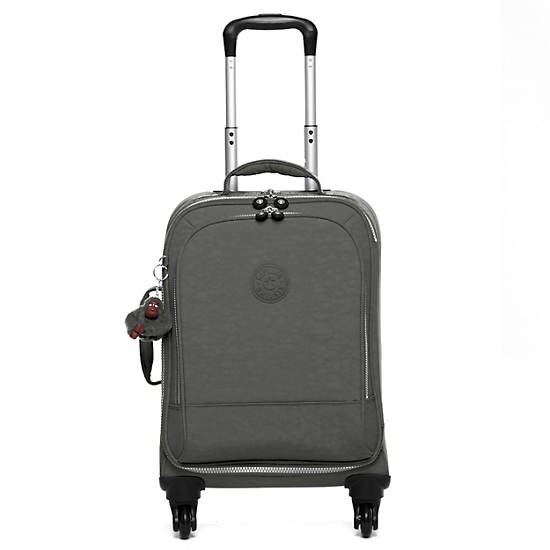 Yubin 55 Spinner Luggage,Celo Grey,large