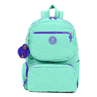 Dawson Large Laptop Backpack - Fresh Teal