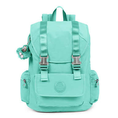 Siggy Large Laptop Backpack - undefined