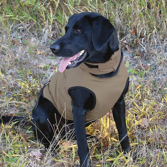 Elimitick Tick Repellant Dog Vest at Legendary Whitetails