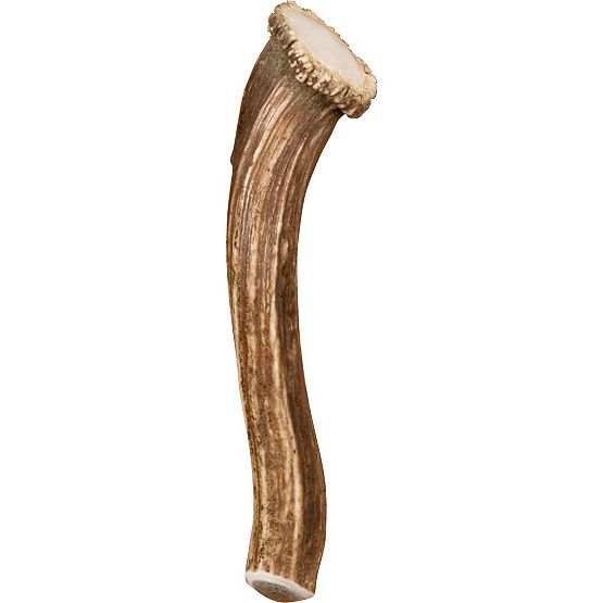 Large Deer Antler Door Handle with Crown at Legendary Whitetails