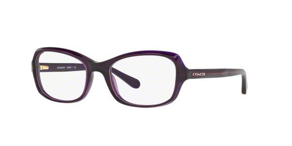 HC6097: Shop Coach Pink/Purple Butterfly Eyeglasses at ...