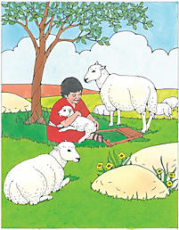 Puzzle: David and the Sheep