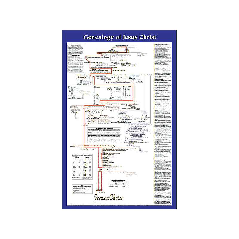 Wall Chart: Genealogy of Jesus - Non-Laminated