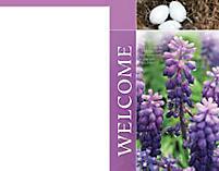 Engage 365 Bulletin: Spring