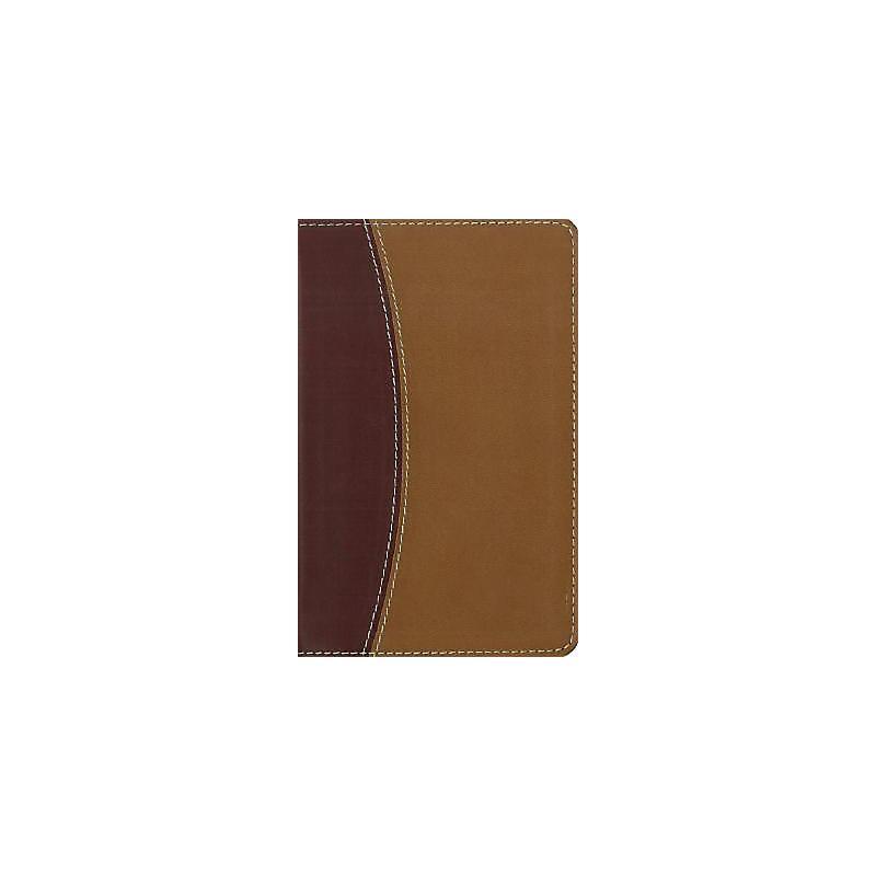 Compact Thinline Reference Bible-NIV                                                                                                                   (Burgundy/Tan)