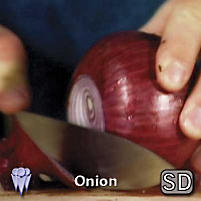 Onion (Video Download)
