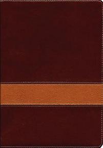 Scofield Study Bible III-KJV-Centennial