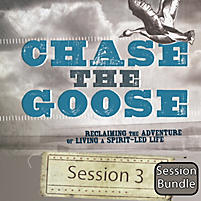Chase the Goose Bundle: Session 3 - Breaking Out of Assumptions (Digital Bundle)