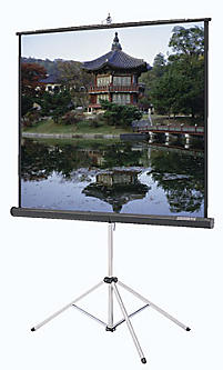 PICTURE KING TRIPOD SCREEN - MODEL # 40146