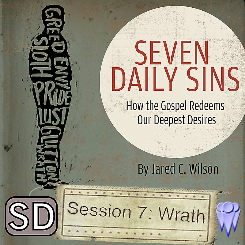 Seven Daily Sins - Group Use Video Sessions (Video Download)