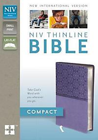 Thinline Bible-NIV-Compact                                                                                                                             (Black/Tan)