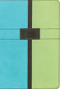 New Women's Devotional Bible-NIV (Blue/Green)