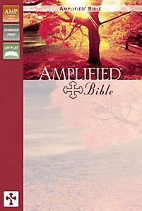 Amplified Bible-AM                                                                                                                                     (Burgundy)