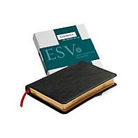 Pitt Minion Reference Bible-ESV                                                                                                                        (Black)