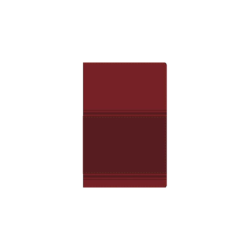 Santa Biblia Lectura Facil-NVI-Letra Grande                                                                                                            (Burgundy)