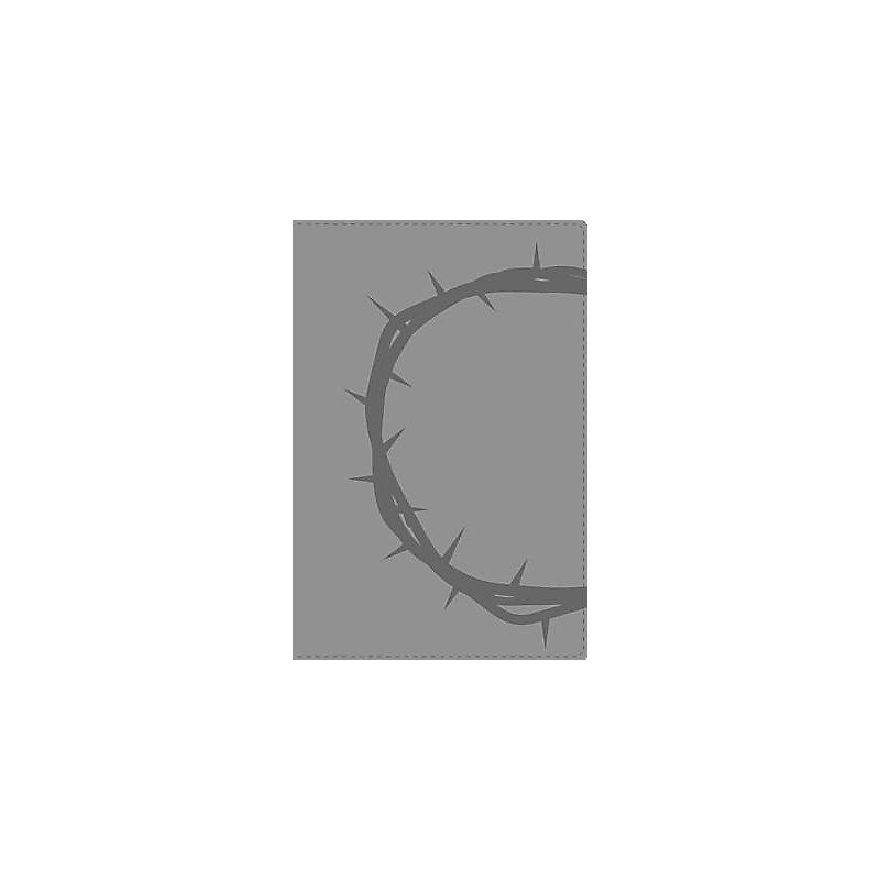 Santa Biblia-NVI                                                                                                                                       (Grey)