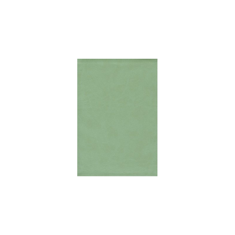 Thompson Chain Reference Bible-KJV                                                                                                                     (Sage Green)
