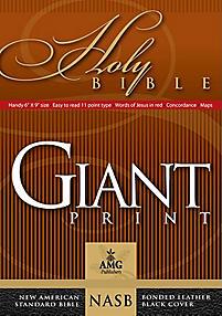 Giant Print Handy-Size Bible-NASB                                                                                                                      (Black)