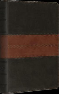 ESV, Personal Size Reference Trutone Bible (Forest/Tan, Trail Design)