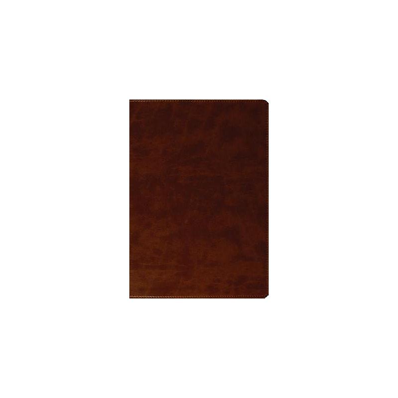 Large Print Bible-ESV (Brown)