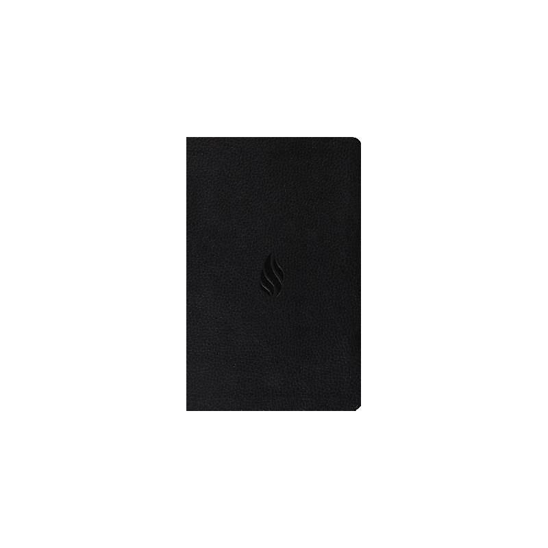 Value Thinline Bible-ESV-Flame (Black)