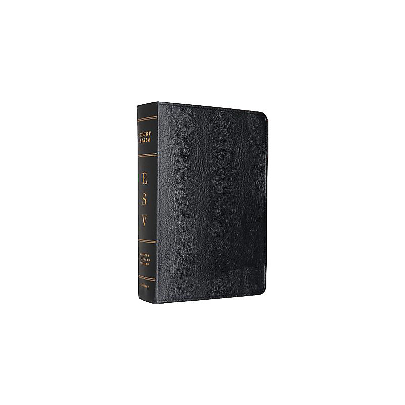 ESV Study Bible - Larger Print (Black)