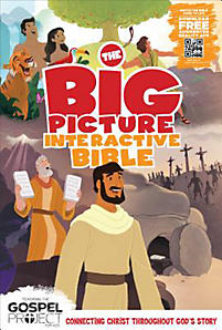 CKM Review: The Big Picture Bible