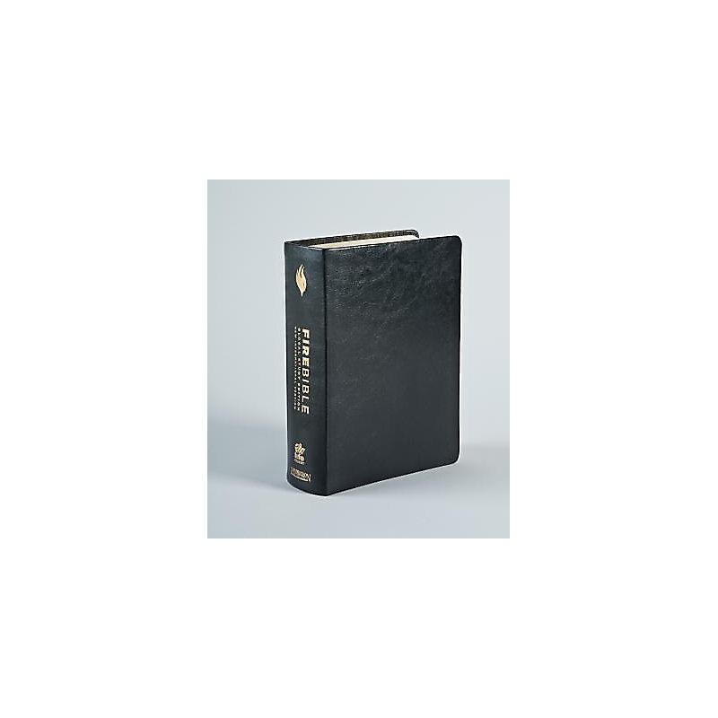 Fire Bible-NIV-Global Study (Black)