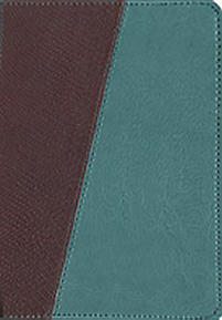 Message Bible-MS-Compact: The Bible in Contemporary Language                                                                                           (Teal/Brown)