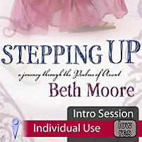 Stepping Up: A Call to Courageous Manhood Workbook