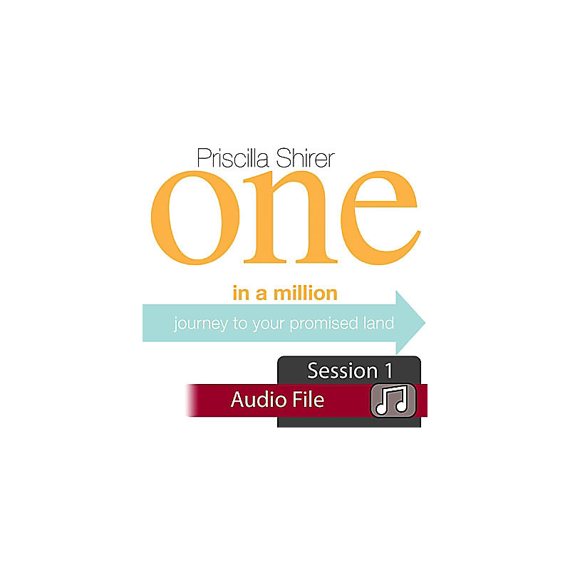 One in a Million: Journey to Your Promised Land - Audio Sessions (Audio Download)