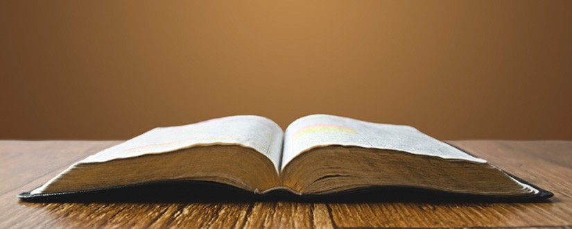 1 Eye-Opening Fact About the Bible by Angie Smith
