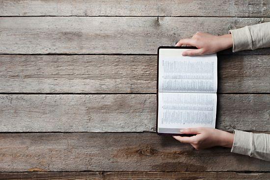 women's ministry, bible study