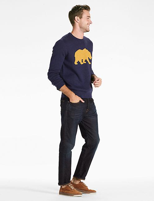 Lucky Golden Bear Sweater