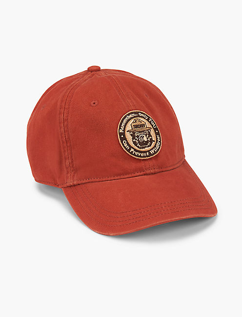 SMOKEY THE BEAR BASEBALL HAT,