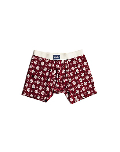 Blue Clover Boxer Briefs