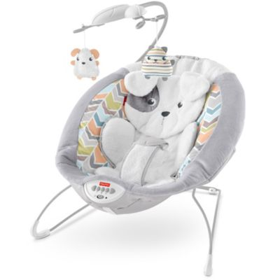 fisher price deluxe bouncer assembly instructions