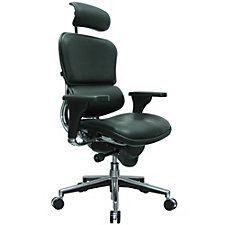 Ergohuman Leather Executive Chair, CH50927