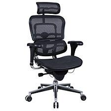 Ergohuman Mesh High Back Ergonomic Chair with Headrest, CH02907