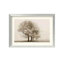 Framed Photography Print- Harmony in Fog by Igor Svibilsky, 8801446