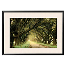 "Framed 43"" x 32"" Evergreen Alley Print by William Guion, ARS-10304"