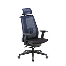 High Back Task Chair with Adjustable Height Arms and Headrest in Mesh, 8807852